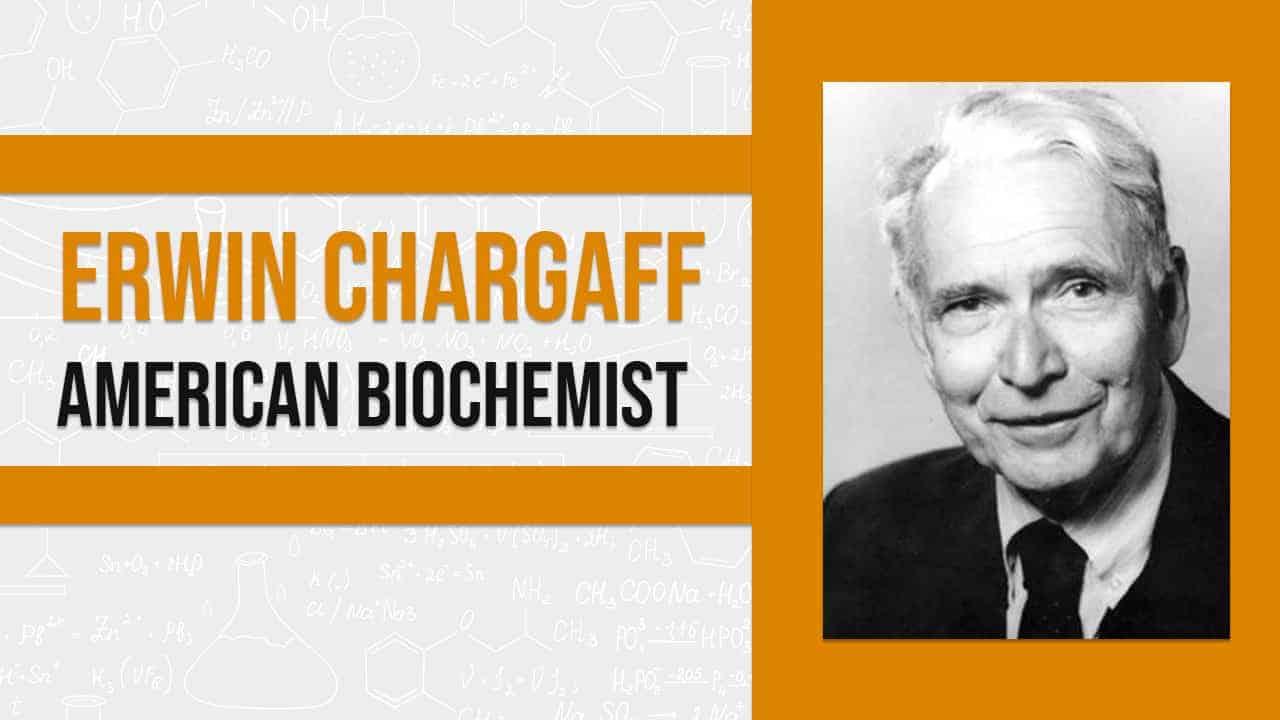 Erwin Chargaff American biochemist